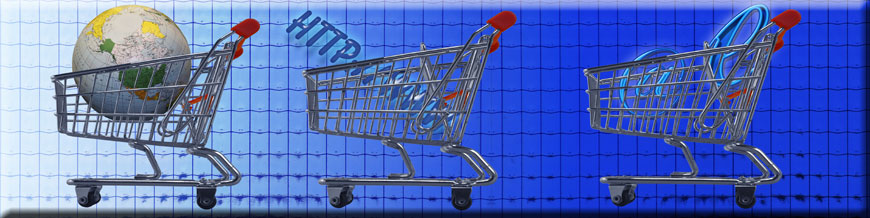 E-Commerce Software Leasing